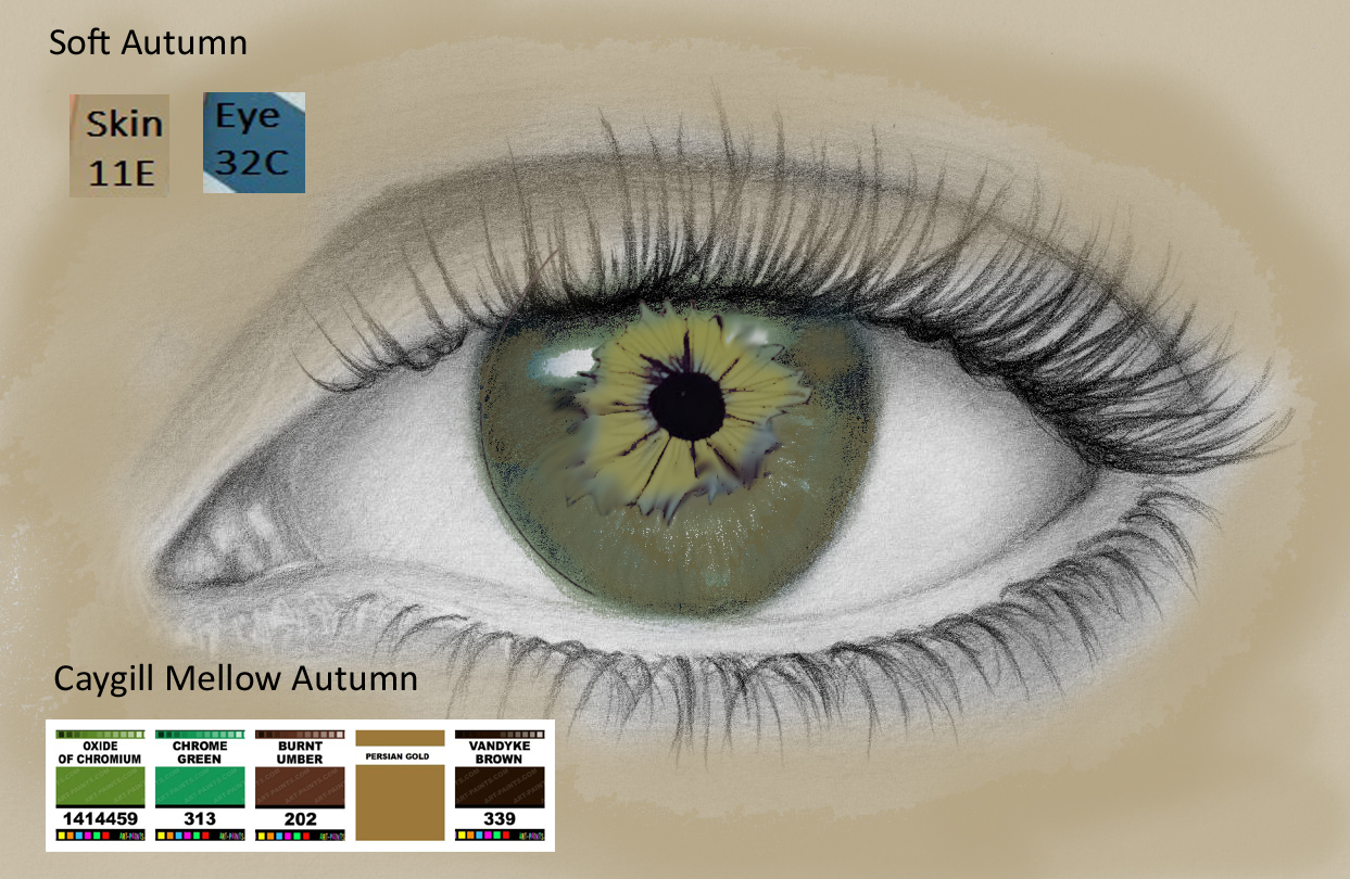 Squishy Eyeball : CMAS Body Colors - Expressing Your Truth