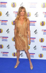 Goldie Hawn British Comedy Awards 2010 held at the Indigo2, The O2 Arena London, England - 22.01.11 Credit: (Mandatory): Daniel Deme / WENN.com